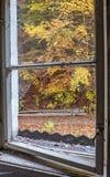 Autumn trees through window Stock Photo