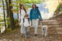 Autumn trek royalty free stock photos