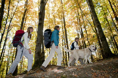 Autumn trekking Royalty Free Stock Image