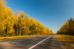 Autumn trip Royalty Free Stock Photography