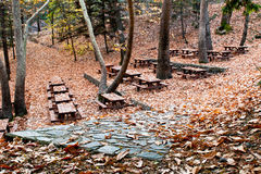 Autumn Troodos, Cyprus. Autumn with yellow leaves at the ground from Troodos mountains in Cyprus Stock Photos