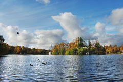 Autumn in Tsarskoe Selo. Great Pond and Chesme column in the Catherine Park, Tsarskoe Selo Stock Images