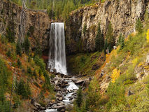 Autumn at Tumalo Falls Stock Image