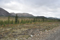 Autumn tundra on the background of mountains in Yakutia. Royalty Free Stock Images