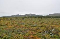 Autumn tundra on the background of mountains in Yakutia. Stock Photos