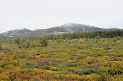 Autumn tundra on the background of mountains in Yakutia. Royalty Free Stock Photography