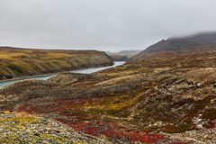Autumn tundra in fog and river Amguema Arctic Stock Photos