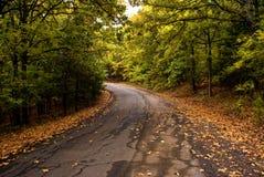 Autumn Turn en el camino Imágenes de archivo libres de regalías