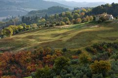 Autumn in Tuscany. Orange trees and lighted green grass with a farm on the right Stock Image