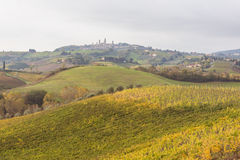 Autumn in Tuscany, Italy. Near San Gimignano Stock Photos