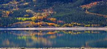 Autumn in Twin Lakes Colorado. Panoramic view of autumn tree reflection in Twin lakes Colorado Stock Images