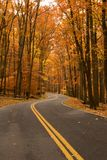 Autumn on two-lane road Stock Photos