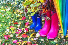 Autumn. Two pairs of rubber boots and colorful umbrella with autumnal leaves. Pair of pink (adult) and blue (child) rainboots. Protection in the rain. Copy Stock Photos