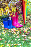 Autumn. Two pairs of rubber boots and colorful umbrella with autumnal leaves. Royalty Free Stock Photography