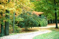 autumn tym punkcie wygięta ścieżki obraz stock