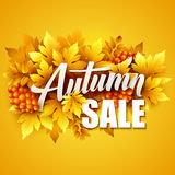 Autumn typographic. Fall leaf. Vector illustration stock illustration