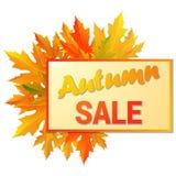 Autumn typographic. Fall leaf. Royalty Free Stock Photo