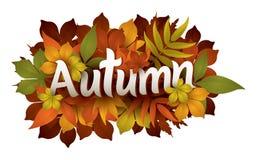 Autumn Stock Images