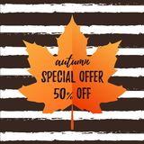 Autumn typography poster with cute colorful leaves in flat style. Autumn typography poster Special Offer 50 off with colorful leaves in flat style. Vector stock illustration