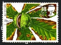 Autumn UK Postage Stamp Royalty Free Stock Photos