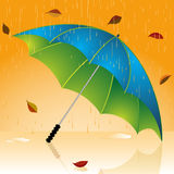 Autumn umbrella Stock Images