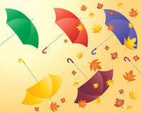 Autumn umbrellas Stock Photos