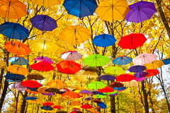 Autumn umbrellas in the sky Stock Image