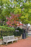 Autumn in a United Kingdom Street. Wooden bench under autumn tree in united kingdom Royalty Free Stock Photo