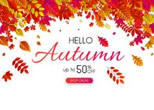 Autumn 50% sale. Promotion card with red leaves. Autumn up to 50 off sale. Promotion card with red leaves. Shop online. Vector background. r Vector Illustration