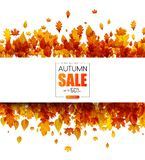 Autumn 50% sale. Promotion poster with golden leaves. Autumn up to 50 off sale. Promotion poster with golden leaves. Special offer. Vector background royalty free illustration