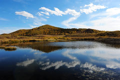 Autumn upland reflections in pond Royalty Free Stock Photos