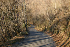 Autumn. Upnhill road with autumn colors Royalty Free Stock Photography