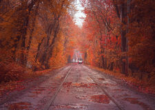 Autumn urban landscape with tramway Stock Photography