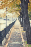 Autumn urban path Royalty Free Stock Photos