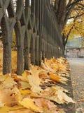 Autumn in Uzhgorod Stock Photos
