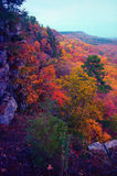 Autumn valley. Looking down a valley at peak autumn color in the Ozarks royalty free stock photo