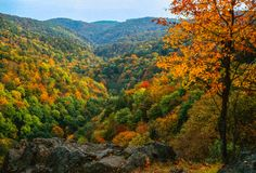 Autumn valley. Illustrations,autumn landscape stock photography