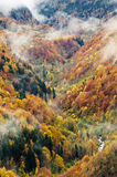 Autumn valley landscape stock image