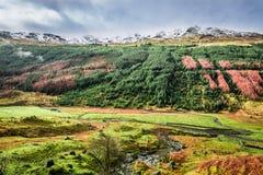 Autumn valley in the mountains Stock Photo
