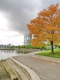 Autumn at Vancouver city Stock Photography