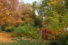 Autumn in a variety of colors Royalty Free Stock Images