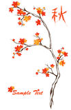 Autumn vector Royalty Free Stock Photos