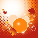 Autumn vector backdrop. Eps10 Stock Photography