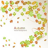 Autumn vector background. Vector illustrator Stock Images