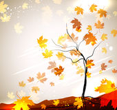 Autumn vector background. With a tree and flying leaves Royalty Free Stock Photography