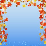 Autumn vector background. An abstract vector background with fallen autumn leaves Royalty Free Stock Image