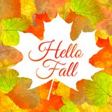 Autumn background with colorful leaves and text. Autumn vector background with colorful leaves and `Hello Fall` quote Royalty Free Illustration