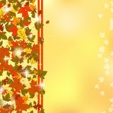 Autumn vector background Royalty Free Stock Photography