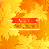 Autumn vector background with leaves. Bright autumn background with leaves. Vector illustration Stock Photo