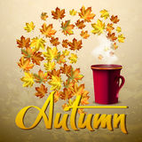 Autumn vector background with  leaves and cup of hot coffee or tea. Hand-written lettering. Typography. Autumn vector background with autumn leaves and cup of Stock Photography
